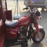 Rueda mecánica Trike de la gasolina tres del motor Trike/del freno con Cabine