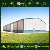 SGS aprobado la luz del acero para la construcción Made in China