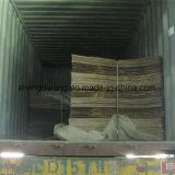 Hoja de acrílico (SDL-906)