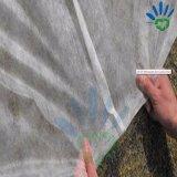 Tissu non-tissé de pp Spunbond pour l'agriculture