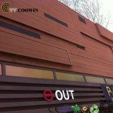 El panel de pared exterior compuesto del Madera-Plástico WPC de Coowin