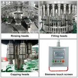 Machine complète de remplissage de boisson pour bouteille en plastique