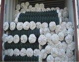 6 ' высоких гальванизированных цепных ячеистых сетей/сетка звена цепи