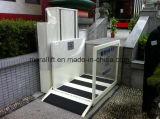 病院によって禁止状態にされる人のHydralicの車椅子用段差解消機のエレベーター