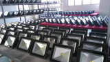 Wasserdichtes im Freien 100W LED Flutlicht mit freiem Firmenzeichen-Service