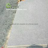 De antislip Donkere Grijze Straatsteen van de Vloer van het Graniet Buiten