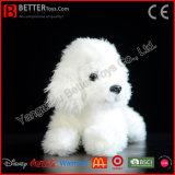 Het Levensechte Stuk speelgoed van de Poedel van de Hond van de Pluche ASTM Zachte Witte Realistische Gevulde Dierlijke