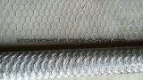 Rete metallica del pollo/rete metallica esagonale galvanizzata con l'alta qualità