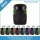 Gute Qualität 12 Zoll Laufkatze-Berufsprojektions-Lautsprecher-mit Batterie