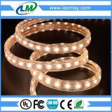 Indicatore luminoso di striscia flessibile di alta luminosità eccellente esterna LED di volt
