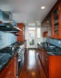 Armário moderno norte-americano das cozinhas do apartamento