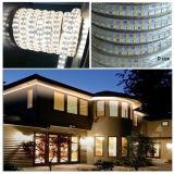 Alto indicatore luminoso di striscia luminoso eccellente di lumen SMD5050 Dimmable LED