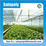 El más barato de efecto invernadero cobertizo del precio de fábrica hidropónica Sistema de Cine para Flores