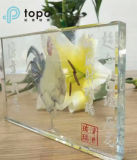 3mm-19mm Super Fine e High Transparent Ultra Clear Building Float Glass (UC-TP)