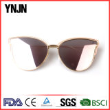 Óculos de sol superiores aceitáveis da amostra quente de Ynjn da venda