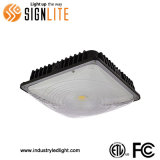 FCC ETL Benzinestation 100W LED Canopy met 5years Warranty