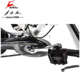 Black Mini Portable 36V Bateria de lítio Electric Folding Bikes (JSL039B-3)