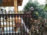 Rete fissa di alluminio di Stee galvanizzata Ce/SGS L& per la barriera, il giardino e la parete