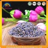 Tè di erbe secco naturale del fiore della lavanda