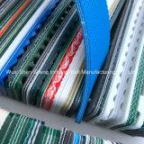 Bleu ciel personnalisé de la courroie du convoyeur en PVC pour l'usine de chaussures
