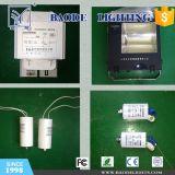 Ce RoHS Coc lámpara solares LED de alta altura (BDG-0033)