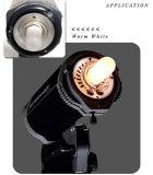 Lámpara fotográfica 150W 250W del halógeno de Jdd