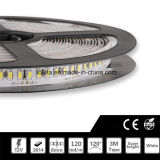 120LEDs IP65 Waterproof a luz de tira do diodo emissor de luz de SMD 3014