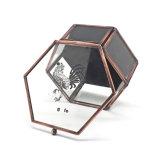 Pequeño rectángulo de joyería de la cubierta retra hexagonal de la pantalla de seda