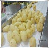 [س] موافقة [لإكستب-3000] صناعيّة [بوتتو بيلينغ] [وشينغ مشن] مع يغذّي ناقل