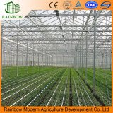 Estufa Photovoltaic dos painéis da utilização elevada de China