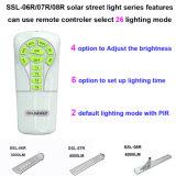 De hoge Lumen integreerden Fabriek van China van de Lamp van de Sensor van de Motie van de Zonne Lichte LEIDENE Verlichting van de Straat de Openlucht