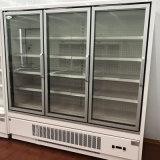 Nacjbarschaftsladen-ausgezeichneter Entwurfs-vertikale Glastür-Gefriermaschine