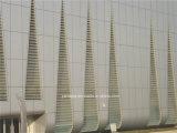Mur rideau extérieur de panneau en aluminium de nid d'abeilles