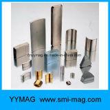 ネオジムアークの磁石低いRpmの永久マグネット発電機の部品