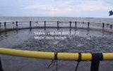 HDPE Aquakultur-Rahmen für Seefischfarm
