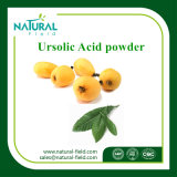 Polvere acida naturale dell'estratto 98% Ursolic del foglio del Loquat dell'estratto della pianta di 100% da HPLC