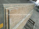 Смесь сота декоративного камня мрамора/гранита/травертина/кварца обшивает панелями Shp356