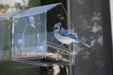 Constructeur acrylique neuf chaud de Shenzhen de cages d'oiseau