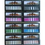 Neue bunte Zahnbürste-Form für kosmetisches ovales Verfassungs-Pinsel-Set