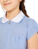 Uniforme di vestito rotonda dalla camicia del collo per la bambina