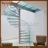 Fertighölzerne gerade Treppenhaus-/Lichtbogen-Treppen-/Spiral-Stahltreppe