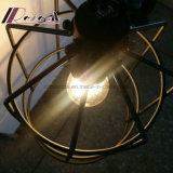 Lumière pendante de fer de Birdcage noir moderne de Matt pour la barre