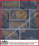 فطر حجارة/فطر أردواز ([سك-3278])