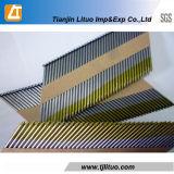 Polainas / Galvanizadas / HDG Painted Paper Strip Nails
