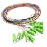 12 tresses de fibre optique de Sc RPA de fibre de faisceaux