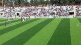 非Infill草、再生利用できるフットボールの人工的な草(V30-R)