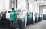 Dk série 100 % de cuivre centrifuge à amorçage automatique de la pompe à eau à usage agricole