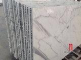 Hot Sale mur intérieur et extérieur de la conception de la dalle de marbre blanc