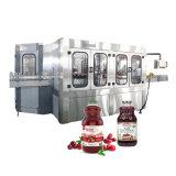 10000bph 1L Le flacon en verre de jus de plafonnement de l'Rinsing-Filling-Machine