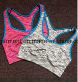 Fitness & Yoga Wear for Women, Lady Sports Bra, Roupa de esporte